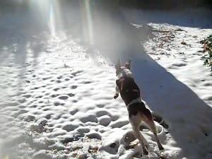 snowjump6