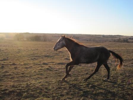 tootie running