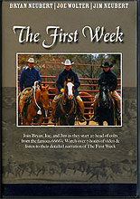 the first week dvd