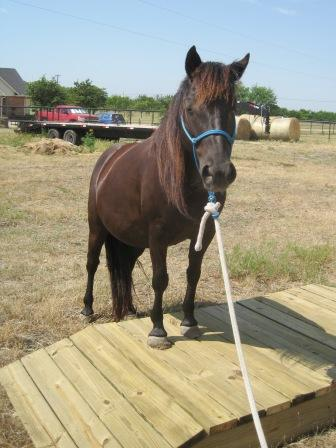 How To Make A Wooden Bridge For Horses