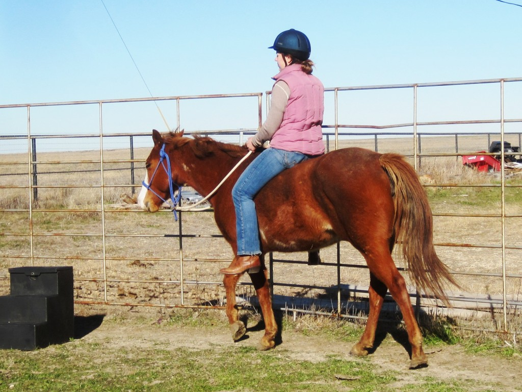 riding cheyenne 2
