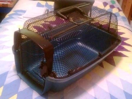 Rat carrier