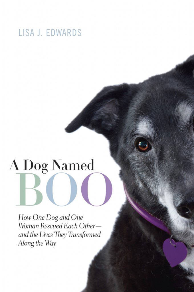 A Dog Named Boo - cover