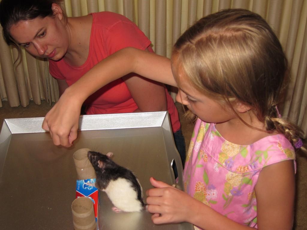Madeleine trains Amy the rat