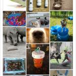 Pinterest - animal enrichment board 1