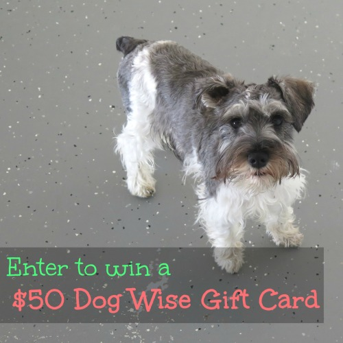 Dogwise gift card giveaway square
