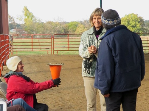 Horse clicker training - Practicing targeting using human horses