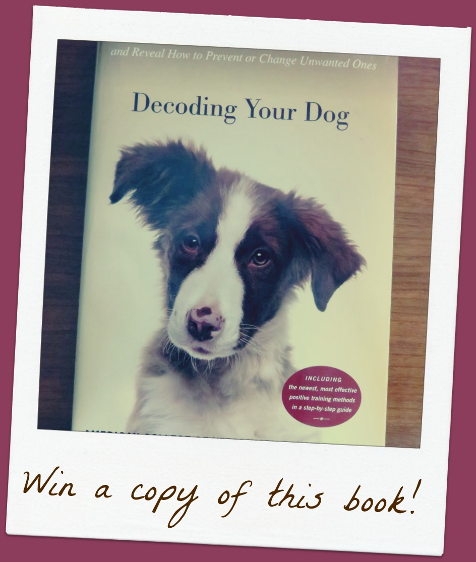 Win a copy of the book Decoding Your Dog