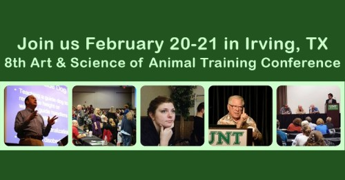 ORCA UNT conference banner