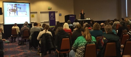 ClickerExpo - stimulus control talk with Sarah Owings