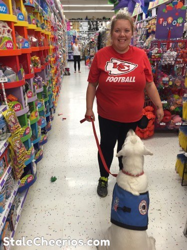 Service dog practices focusing at party city