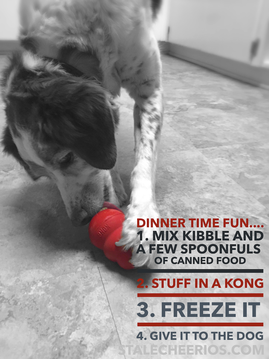 Here's a fun KONG recipe that you can try with your dog. Stuffing the KONG with food makes it into a great interactive puzzle toy. This provides mental stimulation and enrichment for your dog or puppy.  Your dog will think that it is a very fun treat!