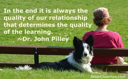 "A quote from the book ""Chaser"" by Dr. John Pilley"