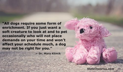"A quote about enrichment from Dr. Mary KlincK from the book ""Decoding Your Dog"""