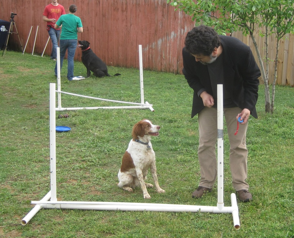 agility-training-jesus-and-ginger-cropped