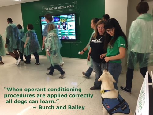 """A quote about operant conditioning and dog training from the book """"How Dogs Learn"""""""
